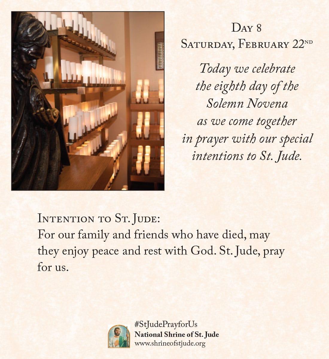 February Novena Day Eight Meditation