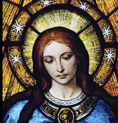 Send Your Petition for the Immaculate Conception to the Shrine